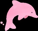 ピンクイルカ
